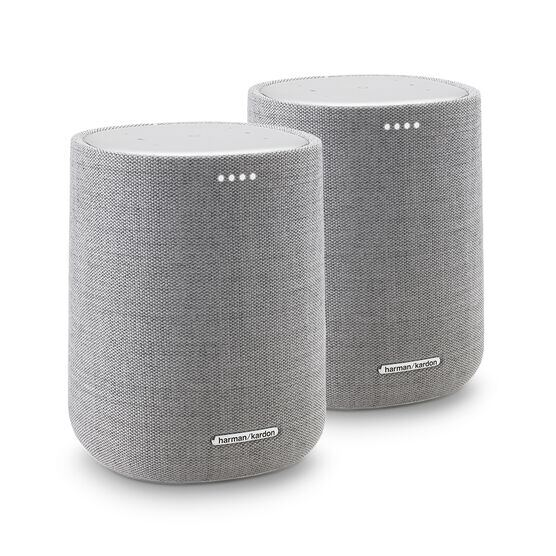Harman Kardon Citation ONE DUO - Grey - Compact, smart and amazing sound - Hero